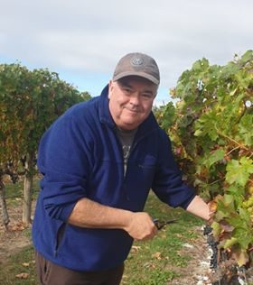 John in working in the Cabernet Sauvignon Askerne Wines Vineyard Hawkes Bay New Zealand